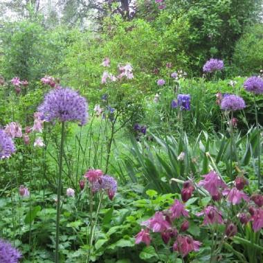 Gartenbau Überlingen_0899